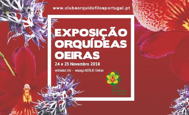 Exposição de Orquídeas de Oeiras