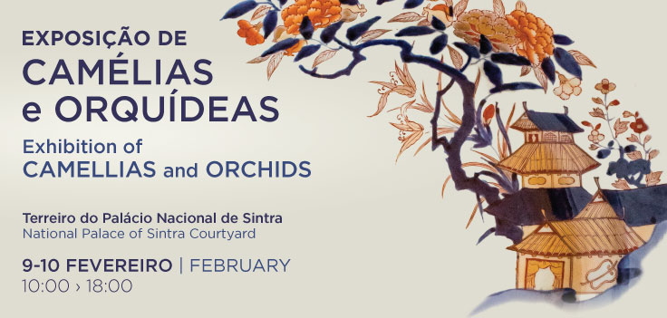 Exposição Camélias e Orquídeas em Sintra
