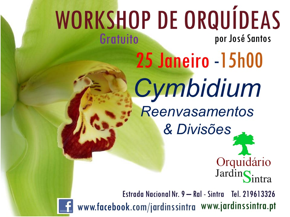 Workshop de Orquídeas
